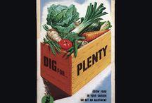 Legumes- vegetables.