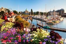 Beautiful Places & Spaces / Places I've been (Alaska, Victoria & Vancouver, Canada, Europe)  and places I want to see.  B.C. Is the most beautiful place on earth to me. / by TBM Enterprise