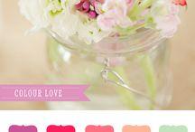 Elephantshoe {Colour Love}
