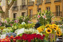 Provence-Toscana