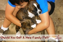 Family pet / From puppies to iguanas, your kids will likely want some sort of pet during their childhood. It's a big decision so choose according to your home, any allergies and your ability to care for them. / by ConnectHer Women & Infants Hospital