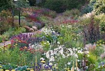 """Gardens of Fife / Gardens to visit in the Kingdom of Fife - some open all year, some open under the """"Scotland's Gardens"""" scheme on specific dates.  Check dates for current year before you go.  All good ideas of things to do on a short break or family holiday at Sandcastle Cottage in Crail (http://www.2crail.com)"""