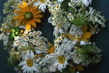 Decorative  Wreaths / Wreaths