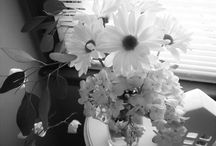"""Fun With Black and White Photos / Photos I've taken ... or others have taken.... that have been changed to black and white instead of color. I will label mine as  """"from my personal photos"""". You can assumed the others were not taken by me.  Love how the black and while pull the detail."""