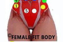 Břišní svaly