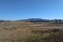 547 Country Meadow Place, Arboles, CO 81121 / Listing Broker (s) - John Gillam & Jonathan Bell  70 acres with views, pond, and horse run in shed and padock. 50 shares of PRID water available. Property has mobile home, not on permanent foundation, with well water and electricity on site.