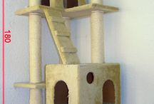 cats houses