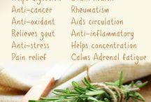 Health & Medical Tips