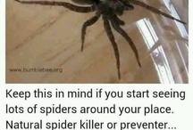 Die Vermin, Die!! / Natural bug killers