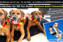 EM-Aktion #hundebettenfans / Zum tierlando Gewinnspiel und Fotowettbewerb zur Fußball-EM vom 10.6. bis 10.7.2016 für #hundebettenfans haben wir jede Menge orthopädischer Hundebetten und weitere tolle Preise ausgelobt! Hier könnt ihr mitmachen und gewinnen: https://www.tierlando.de/tierlando-em-aktionen-hundebettenfan-fuer-fan-rudel/