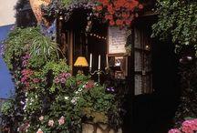 Λουλουδια σε είσοδο εστιατοριου