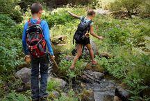 Hiking : Homegrown Adventures