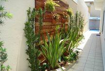 Jardins plantas & Co.