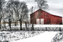 Barns / by Mary Shawn Seaborn