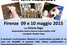 Eventi - Dog Training / Attività, Eventi & Iniziative Varie.