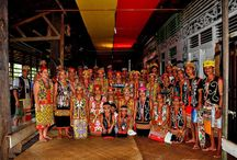 West Borneo - Indonesia / find out the best selection of West Borneo tour package alike jungle camping, trekking and wildlife to be explored. Jungle camping and trekking + visiting the national park in west Broneo , Indonesia.