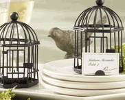 Lovebird-Tema