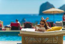 Paradise / by Casa Dorada Resort - Cabo San Lucas