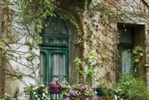 homes / by Elizabeth Calvinisti