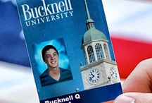 Election 2012 / by Bucknell University