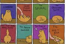 Cats True Facts