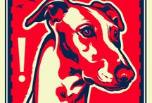 Obey the Purebreed / Propaganda for Dog & Cat World Rule! / by Kit Laird