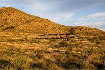 40 Acres of Desert