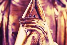 Buddha ✌️