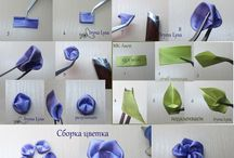 kwiatki kokardki
