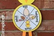 od jaja do kury