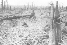 WWI Delville Wood