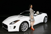 LA Auto Show / by Gina Callari Dziechiasz