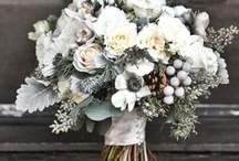 Winter Vows / by Gabrielle Aronas