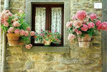 Davanzali,finestre,porte