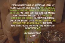Customized Pet Nutrition with pawTree Independent petPro Lisa Bregant