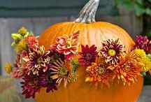 Fall Decorating / by Jennifer Troast