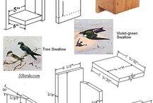 bird house swallow