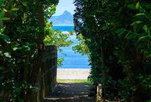 沖縄 -Okinawa-