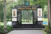 Wisata Bali Bedugul | Gadogadoilmu