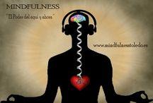 MEDITACIÓN MINDFULNESS / Aprende la técnica de MIndfulness y disfruta de sus beneficios para la Salud