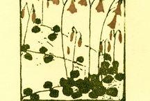 Flower, Fruit, Representation / by Tamar Heller