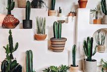 Creen wall