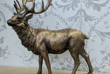 Stags Head / A selection of stags heads from www.oscarsboutique.co.uk