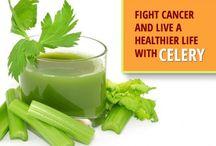 Cancer Nutrition