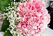 Wedding flowers / by Jessica Fetrow