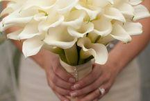 Ramo y flores