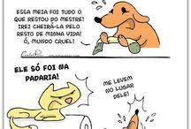 cães e gatos ❤
