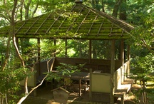 Kōzan-ji, A UNESCO World Heritage Site in Kyoto!
