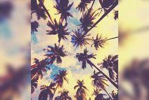 Places ♧