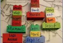 Teaching / by Hannah Finkernagel